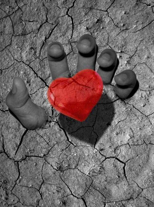 """""""Não adianta vigiar, prender, insistir. A lealdade só é verdadeira se for espontânea. De coração. Você não precisa de alguém que não queira estar com você de corpo e alma. Não tenha medo de não ter alguém. Tenha medo de ter alguém e, ainda assim, se sentir sozinha. Por mais que você ame muito alguém, com todas as suas forças, você jamais poderá fazer isso pela outra pessoa. Quem gosta de verdade não dificulta, não complica. Não existe meio termo. Amores pela metade desgastam por inteiro""""..."""