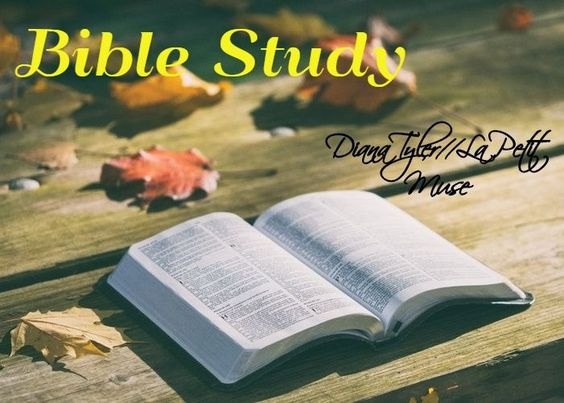 The Bible: Resources and meditation