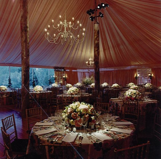 Wedding Canopy Rental: 1000+ Ideas About Party Tent Rentals On Pinterest