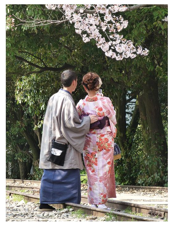 Hanami^^  Kyoto, Japan  #sakura