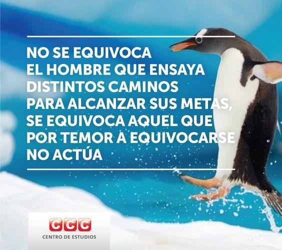 #equivocarse http://www.cursosccc.com/index?codigo=ADAZ
