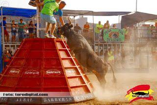 torodigital: Las ganaderías de hermanos Miro y Cali dan buen j...