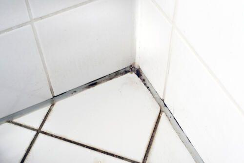 お風呂の天井 壁の目地の黒カビはキッチンハイターで除菌しよう