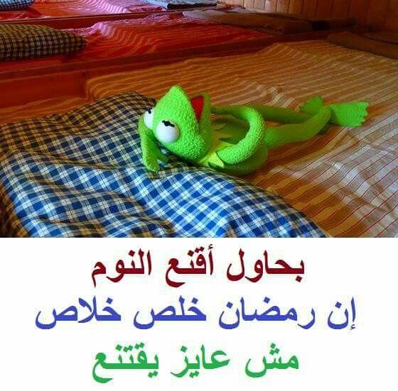 مش عاوز يقنع ههههه Funny Picture Jokes Funny Qoutes Crazy Funny Memes