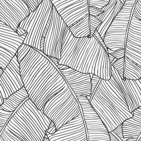Palm Tree Leaf Print black & white pattern, tropical