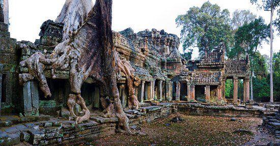 Hình ảnh cây nuốt đền rất quen thuộc trong các kiến trúc của Angkor