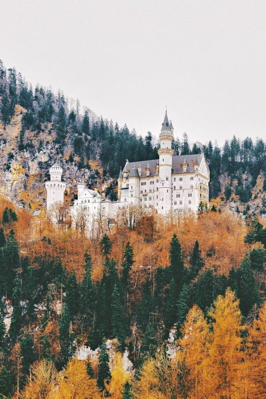 Info Schloss Neuschwanstein Is One Of The Most Famous Castles In The World It Was Built By Bavarian King Ludwig Real Castles Famous Castles European Vacation