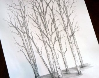 Aspen Tree Drawings Related Keywords Suggestions Aspen Tree
