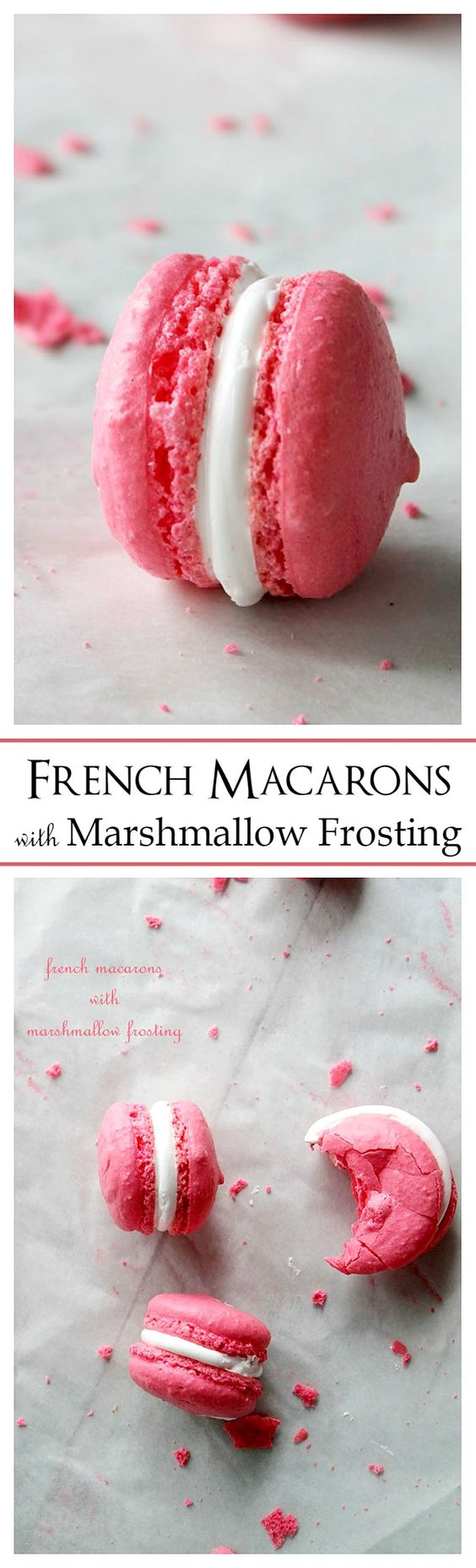 french macaroons walking dead online french macaron marshmallow creme ...