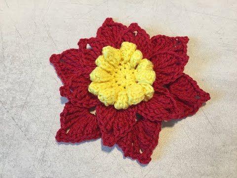 tuto fleur au crochet youtube