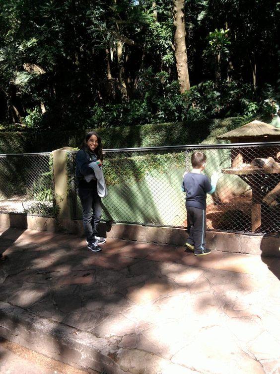Meus sobrinhos: Isa e João Victor no Zoo de Sp...