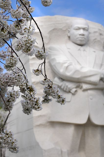 The Martin Luther King Jr. Memorial in Washington, D.C. is breathtaking this time of year surrounded by cherry blossom trees.