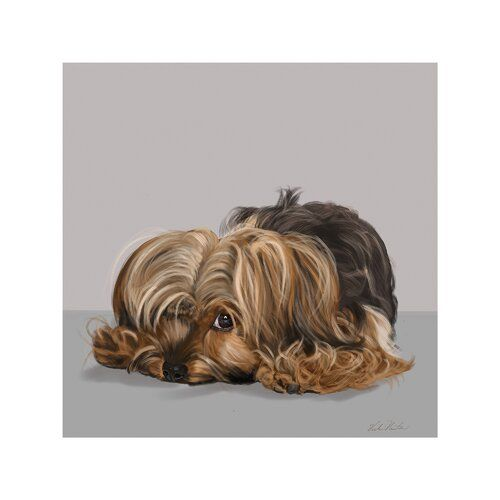 Yorkshire Terrier One Eye Open Graphic Art Print On Wrapped Canvas East Urban Home Size 45 7 Cm H X 45 7 Cm W X 1 9 Cm D Graphic Art Art Prints Yorkshire Terrier