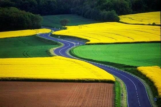 Nature a la an Awesome Canvas Painting! #Germany.