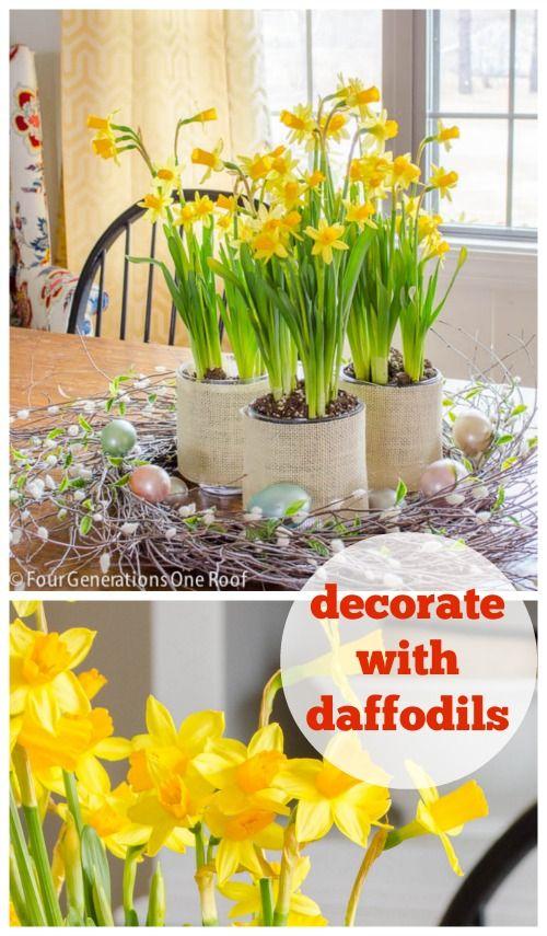 Decorate with daffodils!  Spring decor made beautiful with a daffodil centerpiece by Four Generations One Roof