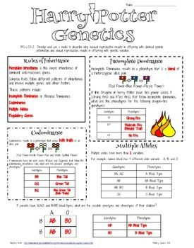 Evolution worksheets for elementary school