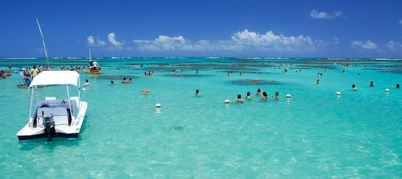 maceio alagoas praias - Pesquisa Google