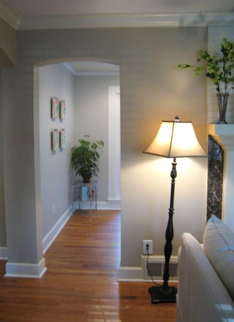 Behr 39 s mineral a perfect mix of beige and gray for the - Perfect paint color for living room ...