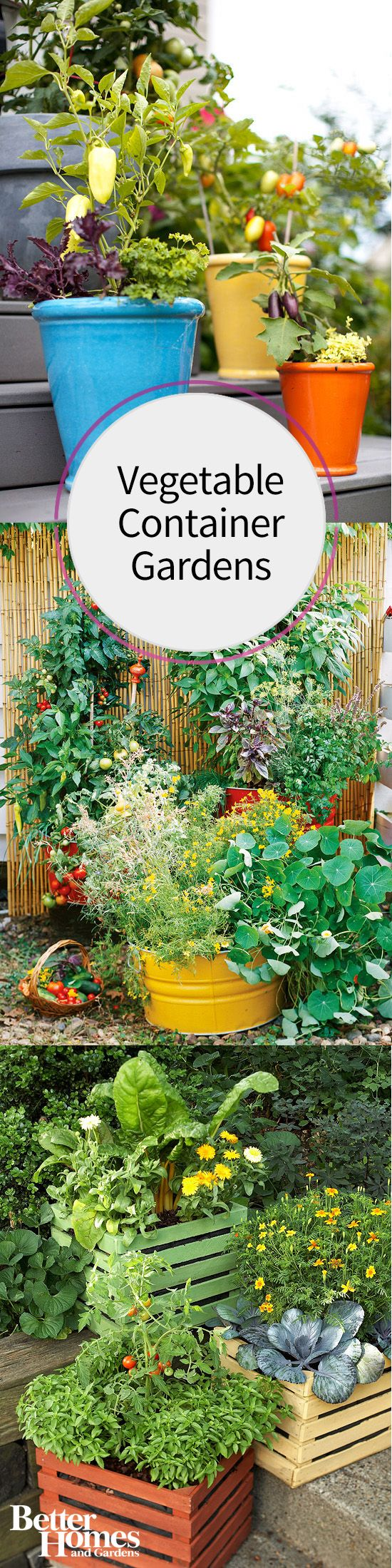 Fresh ideas for growing vegetables in containers gardens for Hanging vegetable garden ideas