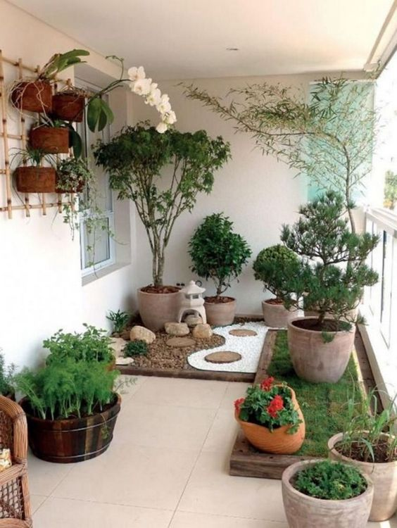 Balcony garden #gardenIdeas #garden #gardening #plants #homeDecor #indoor