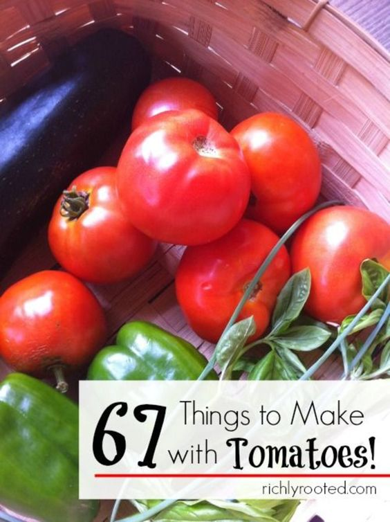 67 Things to Make with Tomatoes