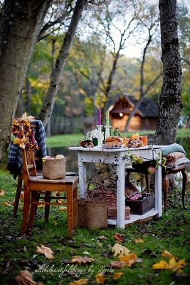 Autumn Picnic...*sigh* Can't you just imagine curling up with some hot chocolate right here??: