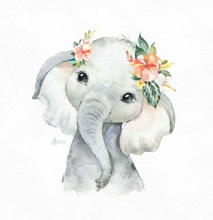 Baby Animals Watercolor Etsy 15 Ideas Baby Elephant Drawing