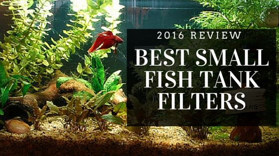 Pinterest the world s catalog of ideas for Small fish tank filter