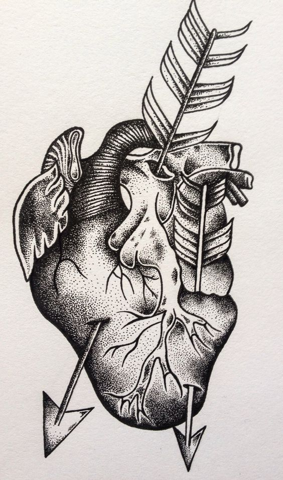 Dotwork Anatomically Correct Heart and Arrow 15x7cm Printed on 300gsm White Card by DotworkOrange on Etsy https://www.etsy.com/listing/205417159/dotwork-anatomically-correct-heart-and
