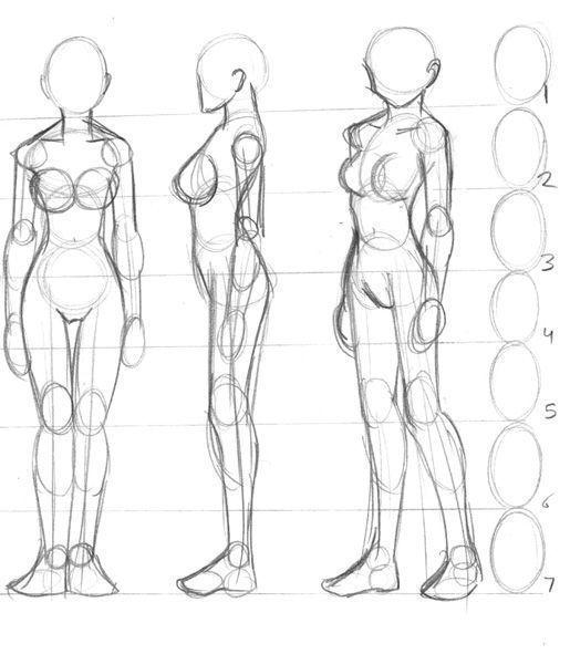 Menschlicher Korper Naturlich Cos Mensch Cos Korper Mensch Menschlicher Naturl In 2020 Human Body Drawing Drawing Body Proportions Human Anatomy Drawing