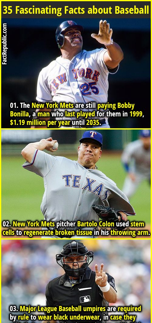35 Fascinating Facts About Baseball Fact Republic Fun Facts Baseball Facts