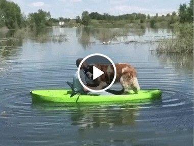 é por isso que não  gosto de andar de canoa