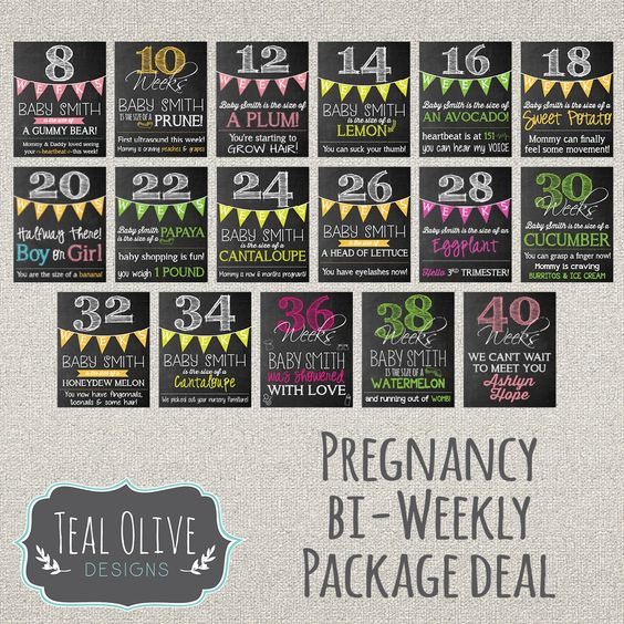 Bi-Weekly Pregnancy Chalkboard Sign by TealOliveDesigns on Etsy