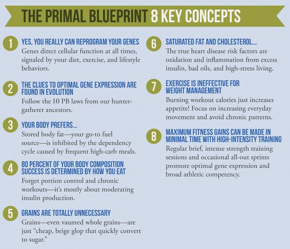 What is the Primal Blueprint?