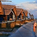 Jetty around lagoon (Dhoni suites) (38516768)