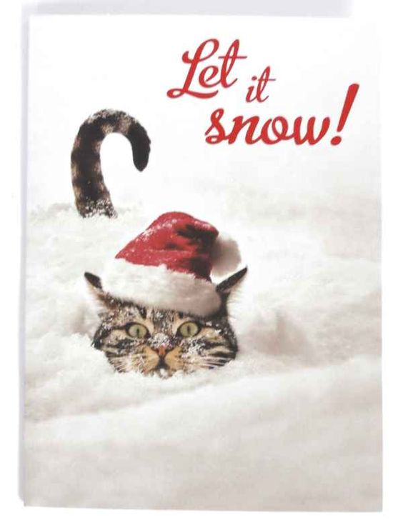 Let It Snow Cat Christmas Card