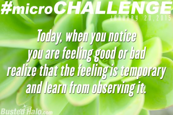 Check out today's #microchallenge: