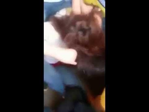 Vídeo Mostra Briga De Meninas Em Escola Em Macapa Macapaensa