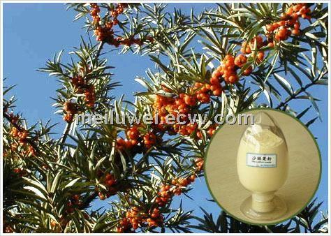 fruit juice powder---sea buckthorn - China fruit juice powder, meiluwei