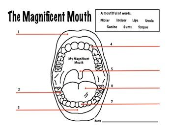 Printables Dental Worksheets mouth dental health magnificent worksheet teaching worksheet