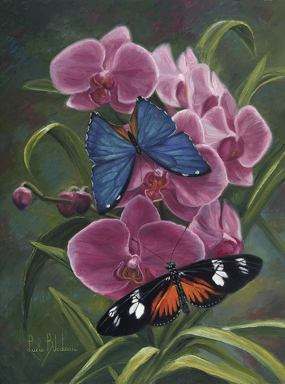 Orchids Print featuring the painting Nature's Poetry by Lucie Bilodeau