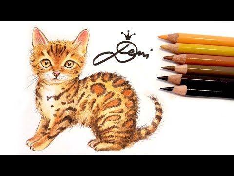 Bengal Katze Zeichnen Lernen Mit Buntstiften How To Draw A Bengal Cat Kak Se Risuva Bengalska Kot Youtube Katze Zeichnen Tiere Zeichnen Zeichnen
