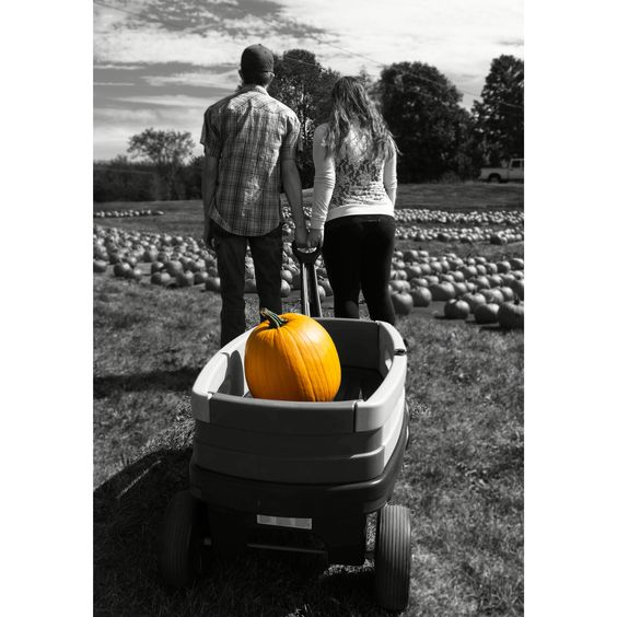 Sneak peak at my sisters maternity photos I took. #maternity #maternitypbotos #babyontheway #photoshoot #photography #fall #fallphotos #pumpkinpatch #wagon