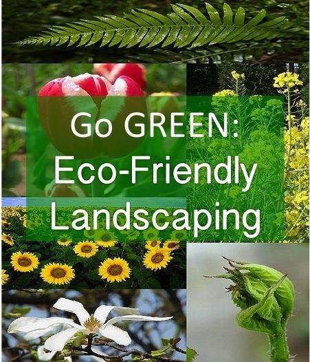 Go Green Eco Friendly Landscaping Ideas Home Garden