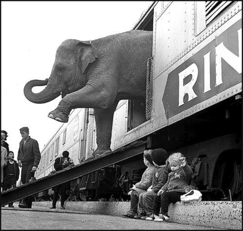 Paul Rice - Ferrovia del Bronx, New York, 1963