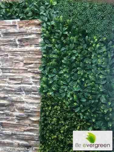 Follaje plantas muro verde enredadera artificial for Muros de plantas verticales