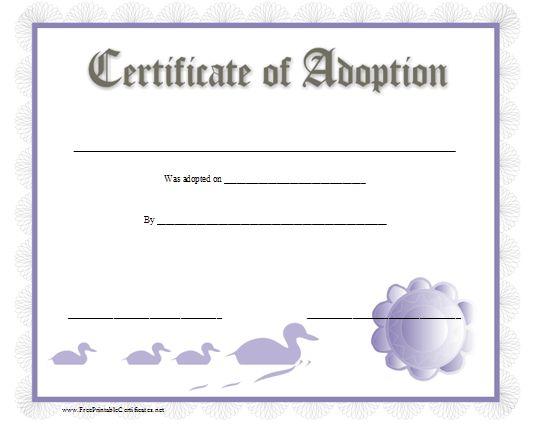 Certificate Of Adoption  Elf On The Shelf    Adoption