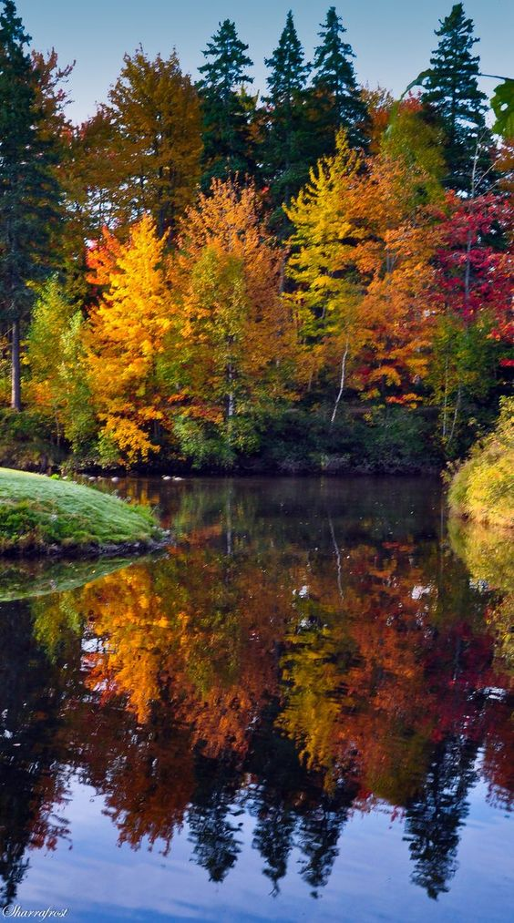 ~~Fall Reflections ~ autumn in Centennial Park, Moncton, New Brunswick, Canada by Brian-B-Photography~~