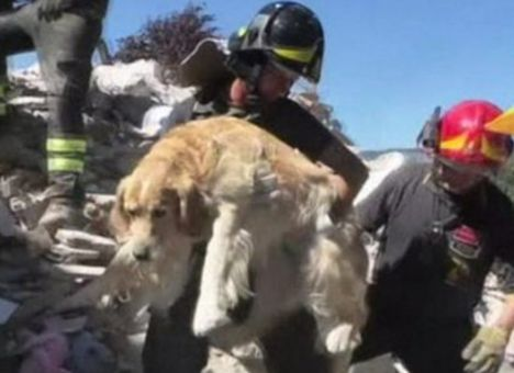 Source: Youtube (Screen Capture)  ITALY: During the earthquake last week, A…