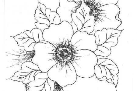 Dibujos A Lapiz De Flores En 3d A4 Flower Drawing Design Flower Line Drawings Easy Flower Drawings